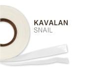 snail 200
